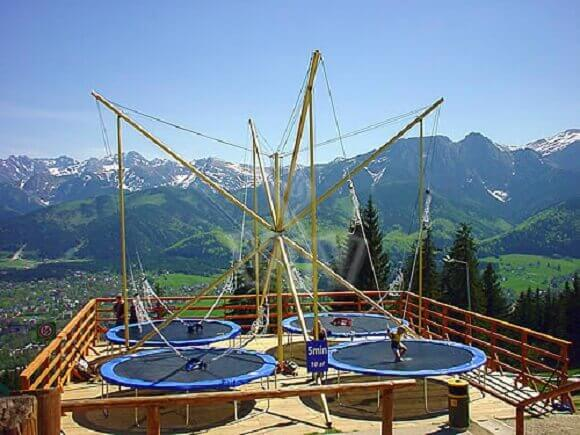 Types Of Trampolines Explained Protrampolines Com
